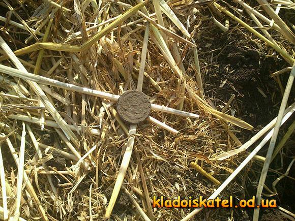монета на поле